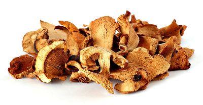 CogumelosSecos